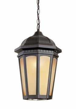 Trans Globe Hanging Outdoor Light - Traditional 40153