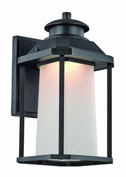 "Trans Globe LED 13.5"" Outdoor Wall Lighting - Black LED-40931-BK"