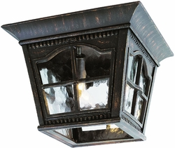 Trans Globe Outdoor Ceiling Light Fixture - 5427