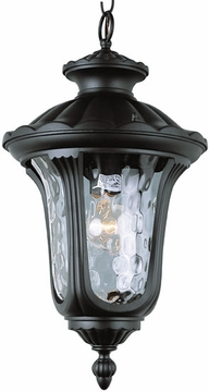 Trans Globe Outdoor Hanging Lighting - 5914
