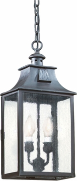 Troy Newton Hanging Outdoor Light FCD9004OBZ