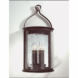 Troy Scarsdale Exterior Wall Sconce B9473FBK