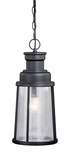 Vaxcel Coventry Outdoor Hanging Light Fixture T0096