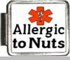 Allergic To Nuts Medical Alert Photo Italian Charm