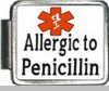 Allergic To Penicillin Medical Alert Photo Italian Charm
