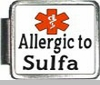 Allergic To Sulfa Medical Alert Photo Italian Charm