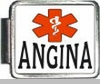 Angina Medical Alert Photo Italian Charm