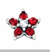 Astrological Floating Charms