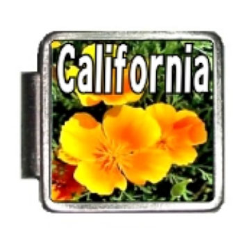 California state flower california poppy photo italian charm mightylinksfo