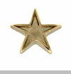 Gold Star Floating Locket Charm