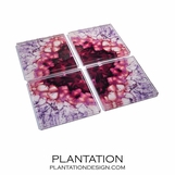 Agoura Lucite Coasters Set | Amethyst