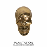 Cranio Brass Skull No. 1 | Small