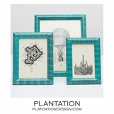 Lexington Snake Frames | Turquoise