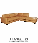 Studio Sectional in Leather w/Ottoman