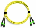 24-Fiber Dual MTP/MPO Fiber Optic Cable, Singlemode OS2, Plenum