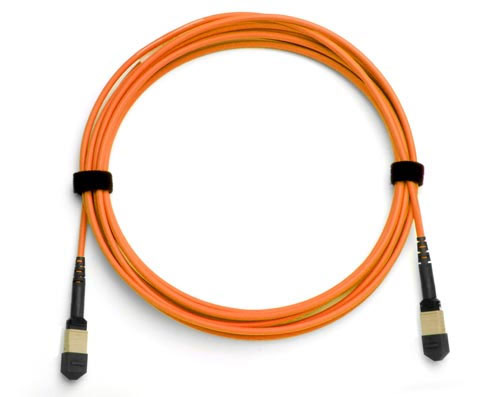 24-Fiber MTP/MPO Fiber Optic Cable, Multimode OM1, Plenum
