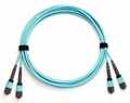 24-Fiber Dual MTP/MPO Fiber Optic Cable, Multimode OM3, Plenum