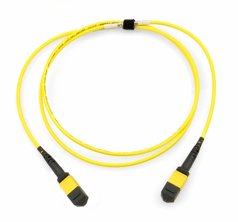 MTP/MPO Singlemode OS2 Fiber Optic Cable - 12 Strand 9/125, Plenum Rated, Flipped Polarity