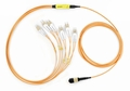 OM2 Cassette-to-SFP MTP/MPO Fiber Optic Cables