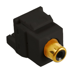 RCA Female Module (Black Insert)