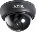 "DO D1710N by CNB 1/3"" Sony CCD, Ultra Hi-Res 480TVL, 0.3LUX 3 Axis Medium Size Day&Night"