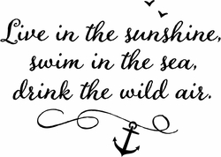 Beach Quotes - Live in the Sunshine