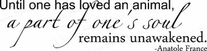 Until One Has Loved....