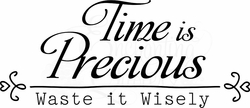Vinyl Ready Quotes - Time is Precious