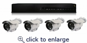 8 Channel PoE NVR Plug & Play Megapixel Bullet Camera Kit