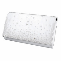 Amy-Elegant Beaded Clutch Purse