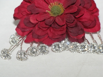 Arietta - Sparkling elegant set of 12 hair pins - SPECIAL back in stock