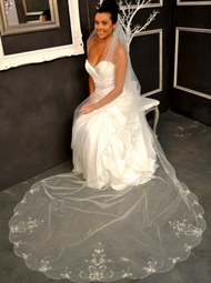 Elena Designs - STUNNING Cathedral crystal Beaded embroidered Veil