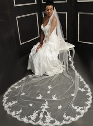 Elena Designs - Beautiful beaded lace Cathedral Veil