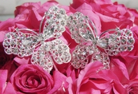Beautiful Crystal Butterfly  (set of 2)