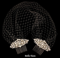 Elegant Face Veil with Two Sparkling Combs - SPECIAL