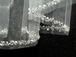 GORGEOUS white crystal beaded edge cathedral bridal veil - ONE LEFT