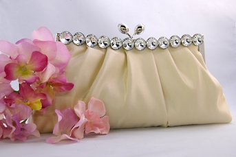 Sophisticated Champagne Evening or Bridal Purse