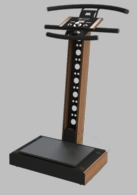 LIFETIMEVIBE - THE HOTTEST WHOLE BODY VIBRATION MACHINE ON THE MARKET