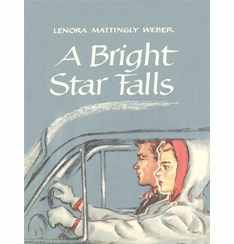 Bright Star Falls by Lenora Mattingly Weber