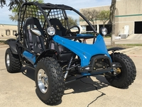 2-Seat Off-Road Gas Go Kart