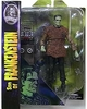 Diamond Universal Monsters Son of Frankenstein Figure