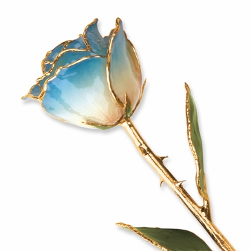 24K Gold Lacquer Real Blue And White Rose