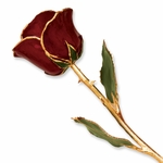 24K Lacquer Gold Burgundy Rose
