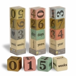 Handmade Wooden Baby Age Bump Countdown Calendar - Set of 4