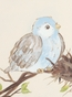 Sweet Songbird Spring Nest Blue Name Plaque Personalized by Dish and Spoon - click to Enlarge