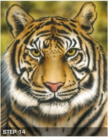 Harder Steenbeck 'Tiger Wildlife' Stencil with Step by Step Instructions