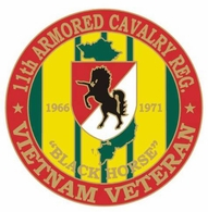 11th Armored Cavalry Vietnam Veteran Pin