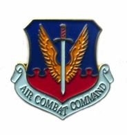 Air Combat Command Pin
