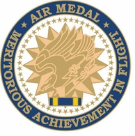 Air Medal Pin