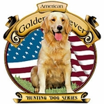 American Golden - Hunting Dog Series
